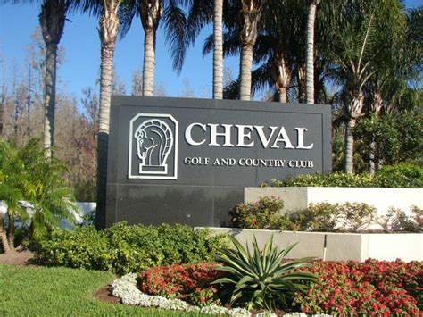 cheval homes for cheval florida images