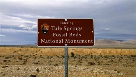 tule springs fossil beds national monument tule springs fossil beds is an awesome fossil park in nevada