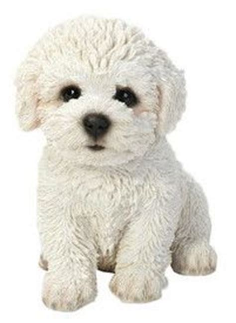 bichon frise slippers bichon frise slippers just as fluffy and as a