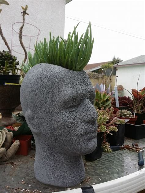 large head planters 1000 images about diy head planter inspiration on
