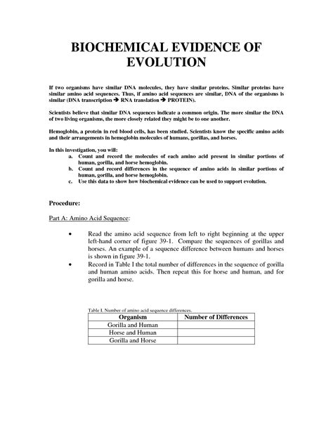 Evidence Of Evolution Worksheet Answers by 16 4 Evidence Of Evolution Worksheet Answer Key Deployday