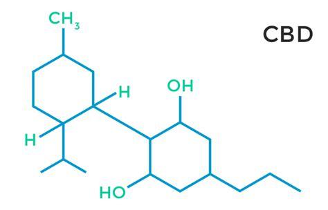 Cbd Also Search For High Cannabidiol Strains For Seizures Cbd Cbd Extract