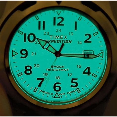 timex indiglo light timex 174 expedition white 177735 watches at