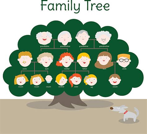 Royalty Free Teenage Twin Boys Clip Art Vector Images Illustrations Istock Genealogical Stock Vectors Royalty Free Genealogical Illustrations Depositphotos 174