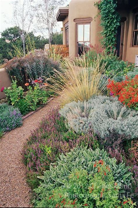 17 best images about xericscape landscape ideas on pinterest gardens drought tolerant and