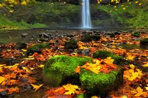 silver falls park south falls fall color orego flickr