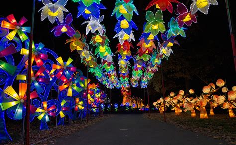 chinese light festival cary nc columbus festivals events