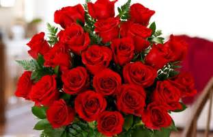 how much are a dozen roses meaning of two dozen roses proflowers