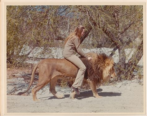 lion film melanie griffith the making of roar melanie griffith riding a lion