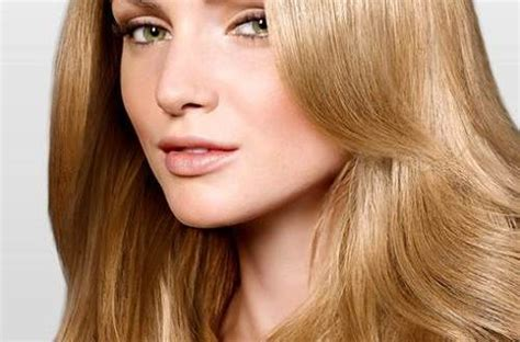 light golden brown hair color chart brown hairs