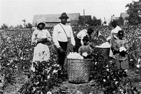american capitalism new histories columbia studies in the history of u s capitalism books how slavery gave capitalism its start