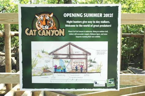 Ccat House Detox Cincinnati by Hunters Opens Cincinnati Zoo