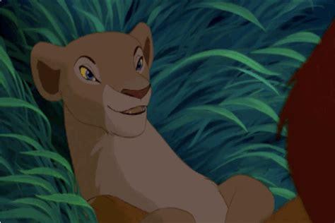 lion king nala bedroom eyes cookies sangria
