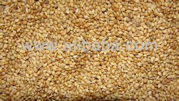 bird food thinai millet buy millet product on alibaba com