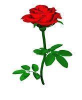 wallpaper gif rose free rose gif phone wallpaper by guanaca