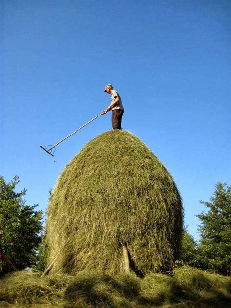 the art of the romanian haystack kuriositas