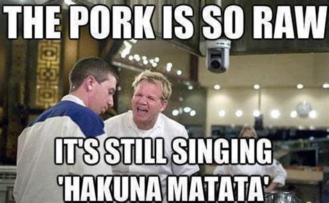 Gordan Ramsey Meme - the 20 funniest gordon ramsay memes smosh