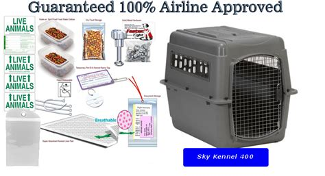 travel kennel sky kennel 400 pet travel kennel package kats n us