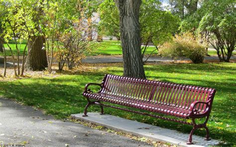 bench at the park park bench wallpaper 693623