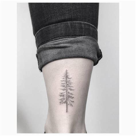 tree line tattoo line pine tree on the right achilles heel