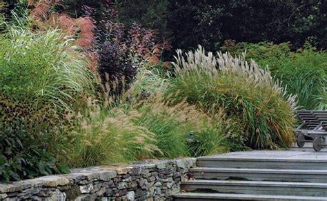 designing with grasses fine gardening