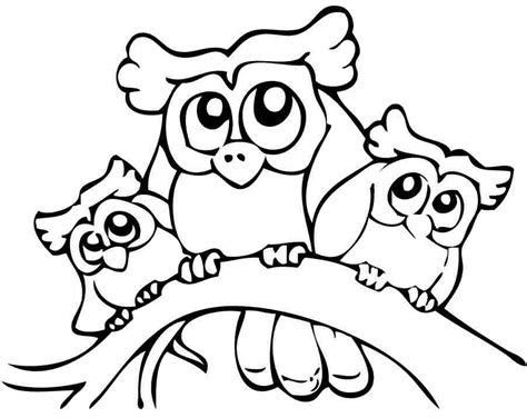 owl coloring pages preschool image gallery owl coloring pages preschool
