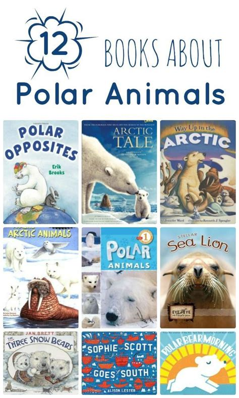 animal books polar animal books nonfiction animals and animal books