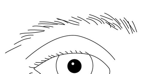 eye coloring pages for preschool eye worksheets for toddlers for eye coloring page with