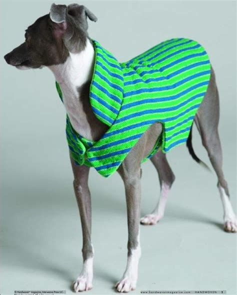 sewing pattern greyhound coat various dog coats sweaters to sew or knit or make in other