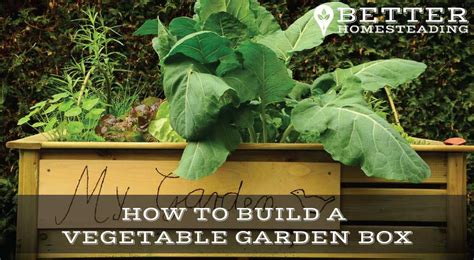 How To Build A Vegetable Garden Box With Video Better How To Make A Vegetable Garden Box