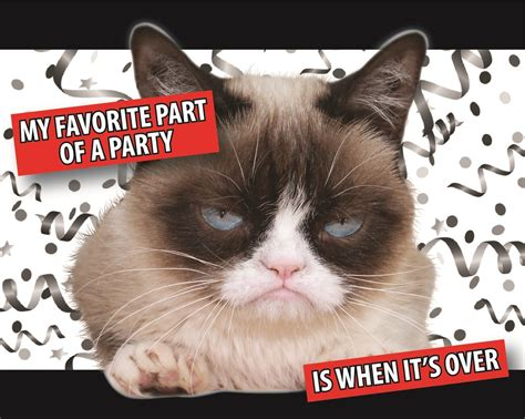 grumpy cat party ideas one charming party birthday grumpy cat party invitations grumpy cat party supplies