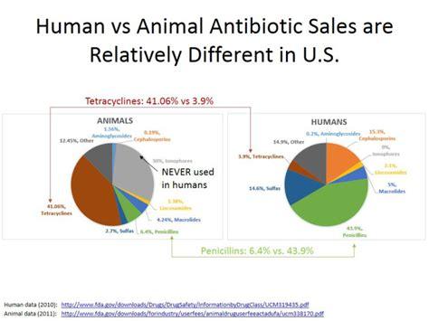 amoxicillin vs human amoxicillin 187 search results 187 chipotle corn commentary
