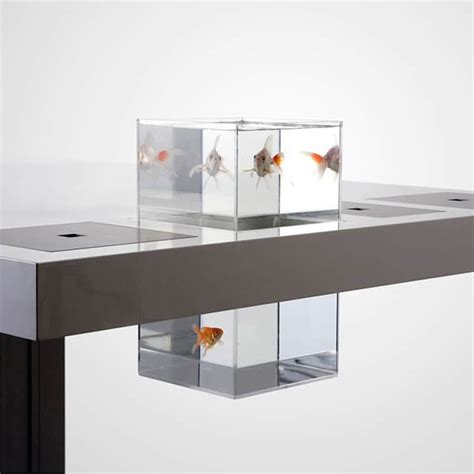 milk tiny desk cool aquariums for your room