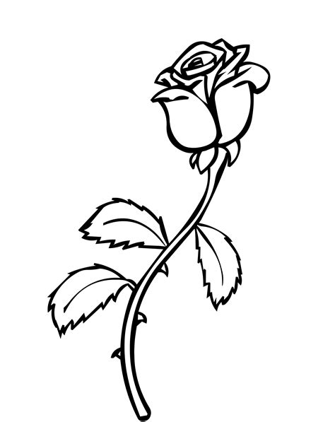 coloring pages of real roses rose coloring page allmadecine weddings roses coloring