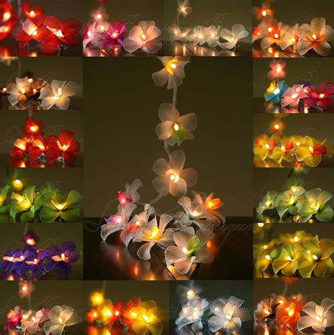 20 Or 35 Led Nylon Orchid Flower String Fairy Lights Orchid String Lights