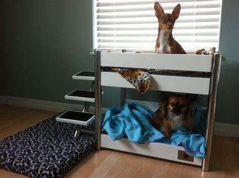 pet bunk bed amazon com lazybonezz metropolitan pet bunk bed ebony