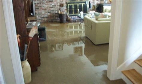 how to prevent a basement flood icezen