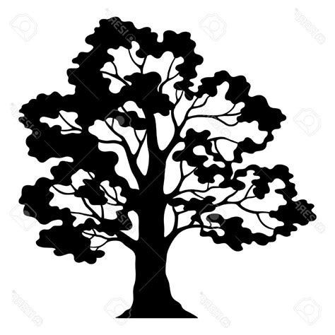 free clipart silhouette best oak tree silhouette clip photos