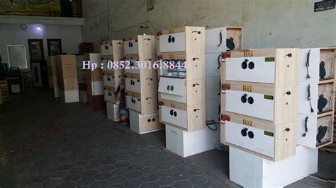 Harga Mesin Tetas Telur Ayam Di Medan pembuatan mesin penetas telur 0838 5633 8213 penetas telur