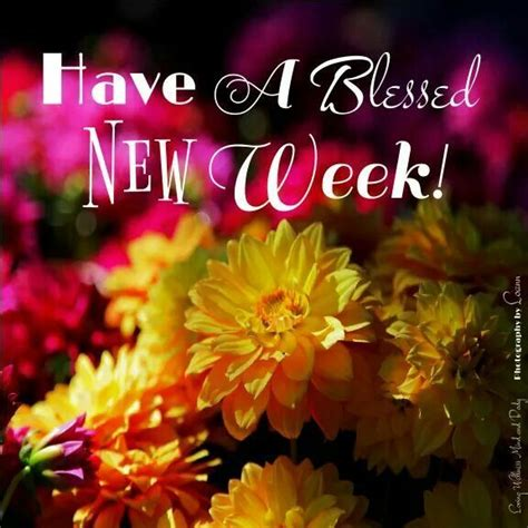 happy week images a blessed new week monday morning happy monday