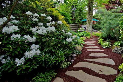 Landscape Supply Plum Pa Landscaping Pittsburgh Plumline Nursery