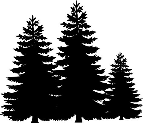 pine tree outline clipart clipart suggest