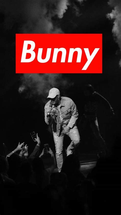 bad bunny wallpaper  mateobd    zedge