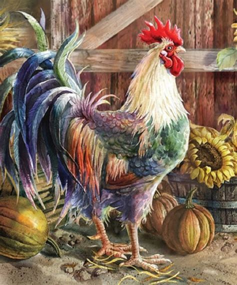 rooster pictures for kitchen country farmyard rooster kitchen dishwasher cover magnetic decor 26 quot l new i5624 unbranded