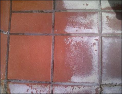 Professional Grout Cleaning Advantages Of Hiring A Professional Tile Grout Cleaner Cbc Cleaning