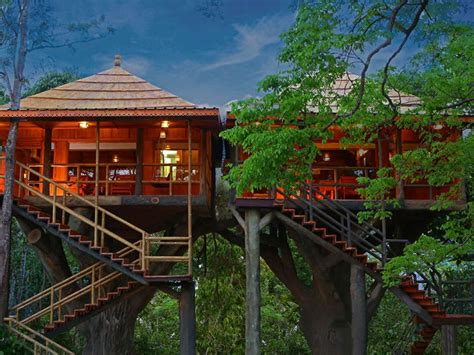 rangerwood machan jungle tree house thekkady india booking com