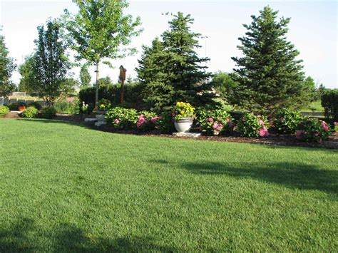 small backyard landscaping ideas for privacy backyard landscaping ideas for privacy amys office trees