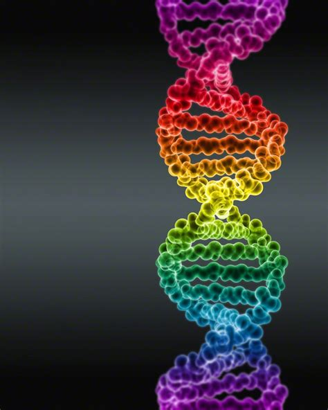dna colors spectrum colored dna by digital pop