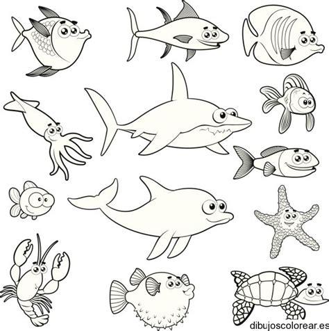 imagenes animales invertebrados para imprimir dibujos para imprimir animales marinos imagui