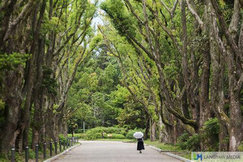 Kyoto Botanical Garden A Beautiful Walk At The Kyoto Botanical Garden Langyaw